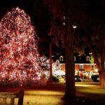 Christmas Eve Caroling with Arts Council Carolers 12/24/17