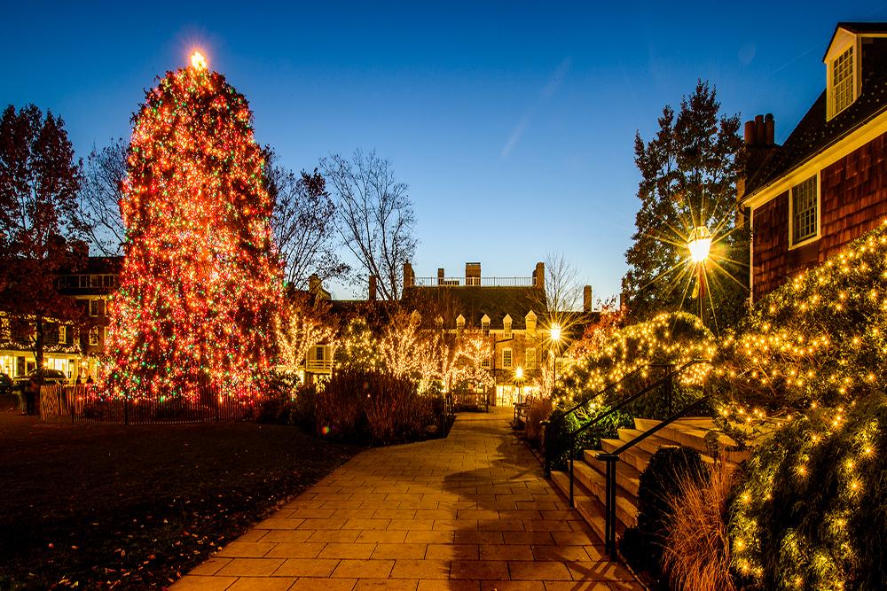 Palmer Square Tree Lighting 2019