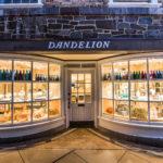 Dandelion's March Sale – Saturday, March 10th